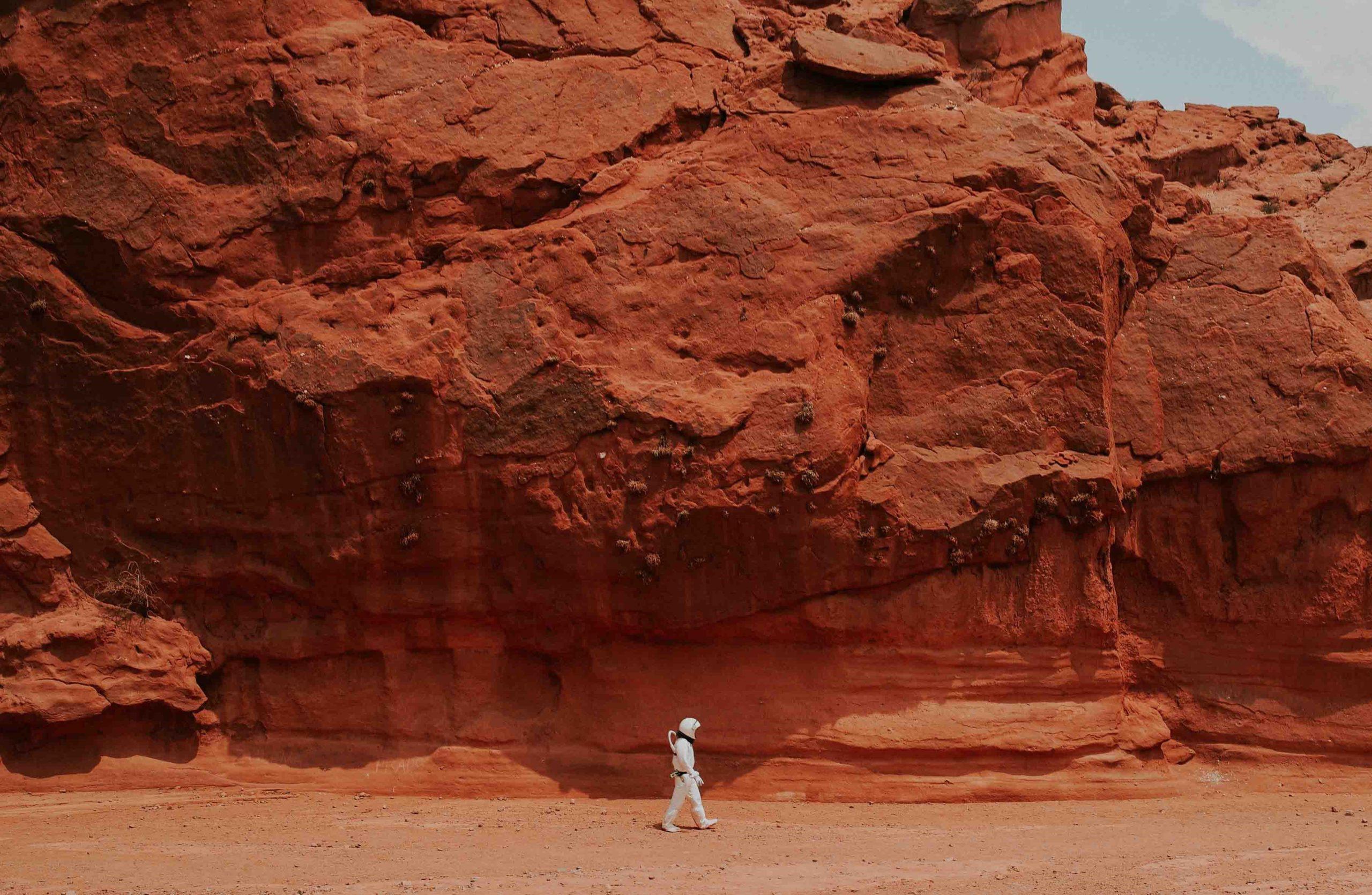 Uomo su Marte, non più un'utopia. Le possibilità dell'ibernazione