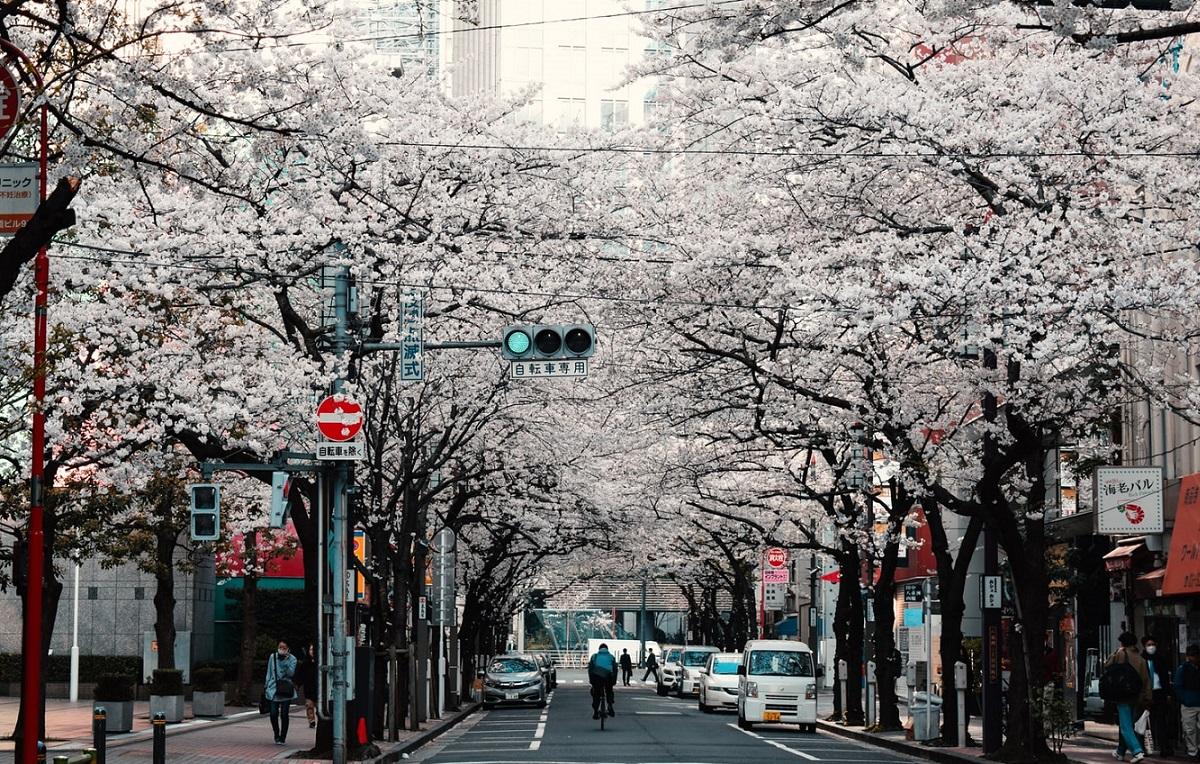Into the sun - Tokyo