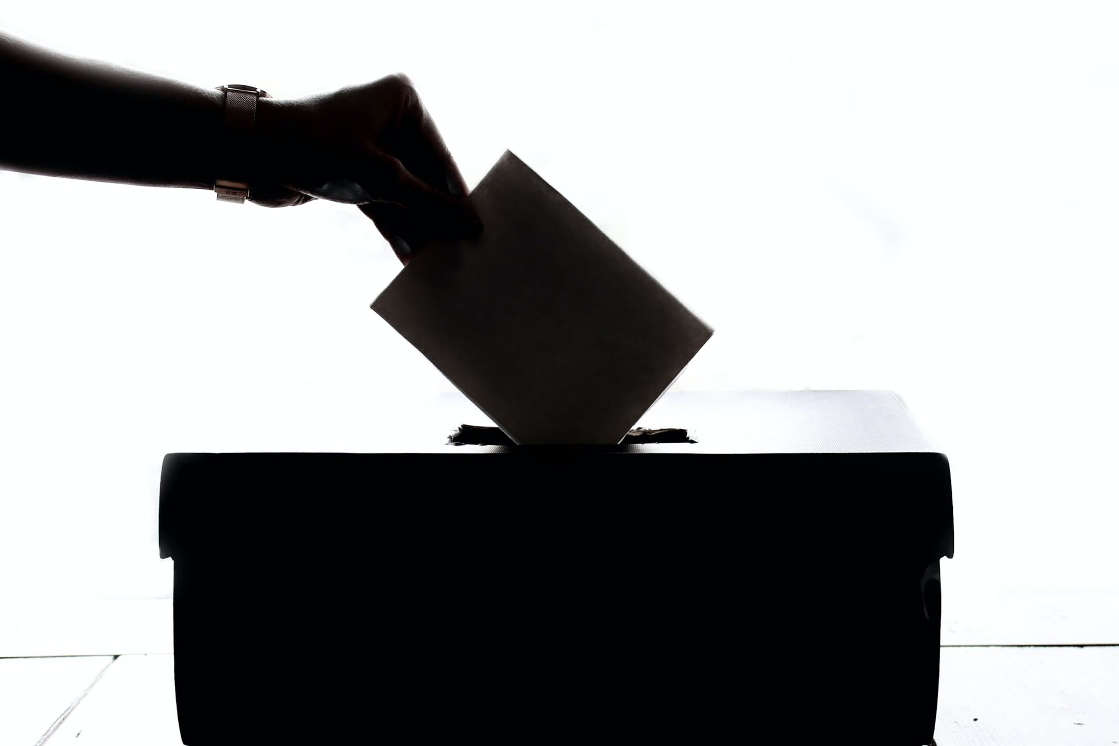 Elezioni Comunali 2020: come sono andati i ballottaggi?