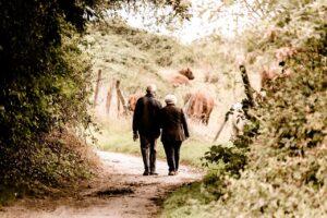Pensioni ultime notizie: pensionati superano dipendenti pubb