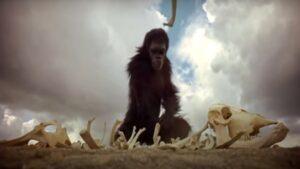 Quiz cinema: sai riconoscere il film da una sola immagine