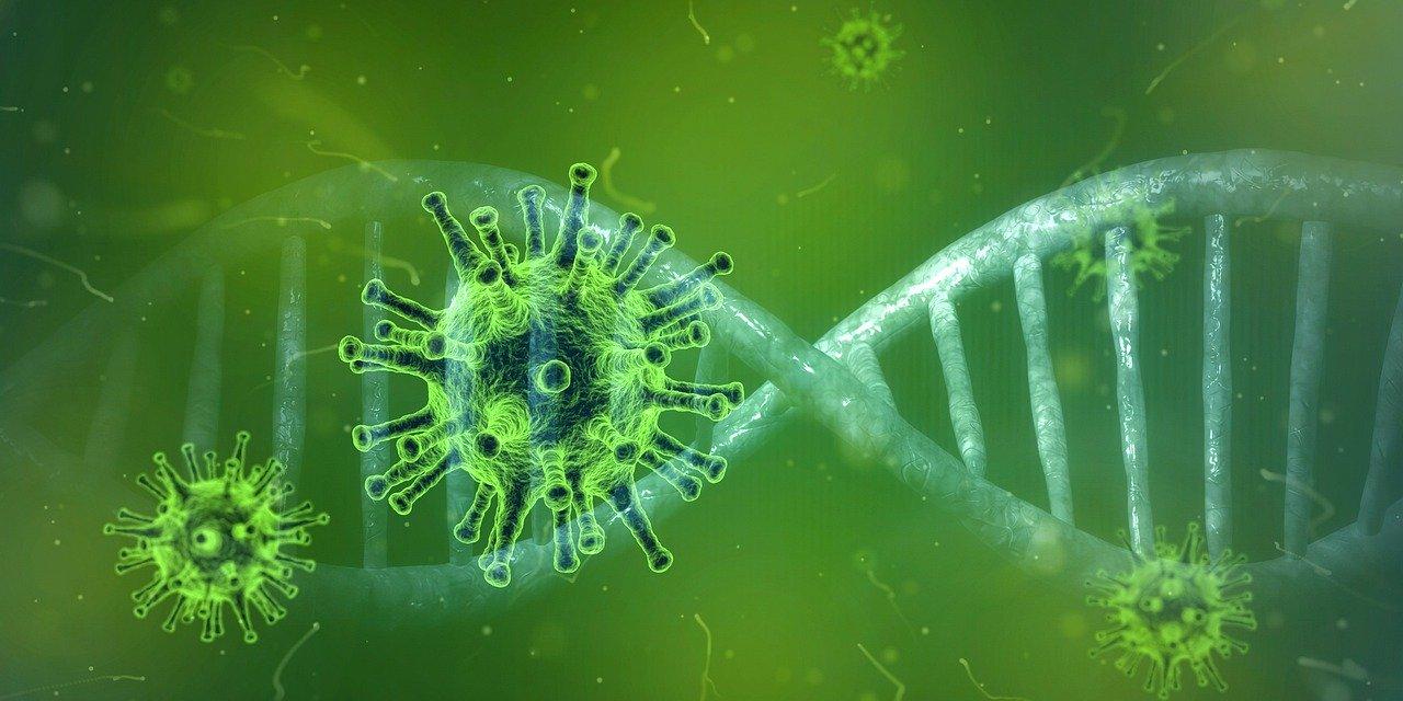 Coronavirus ultime notizie calano positivi aumentano ricoveri